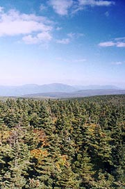 The Green Mountains from Glastenbury Fire Tower
